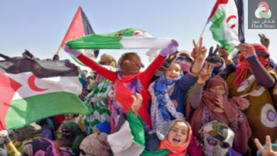 صورة الجزائر لم و لن تتخلى عن مساندة الشعب الصحراوي ، نعم و الف نعم لتدخل الجيش الجزائري خارج التراب الوطني عند الضرورة …